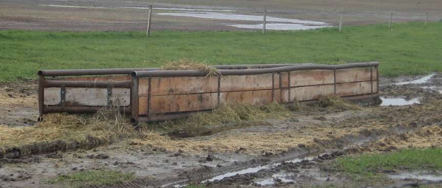 Feed Trough 2010
